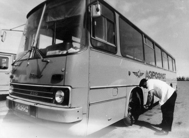 автобус Икарус.jpg