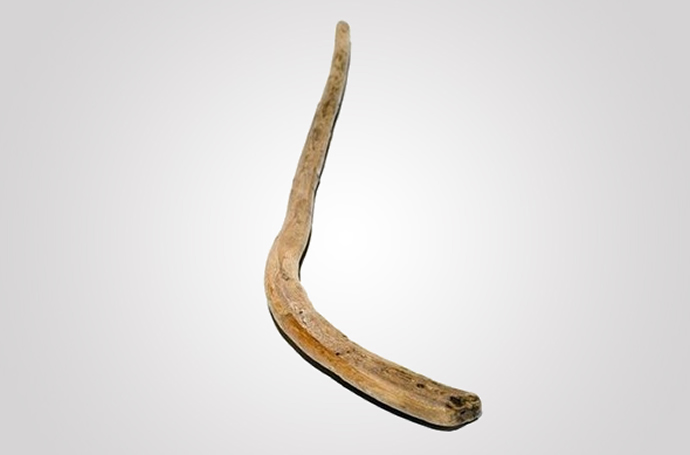 most-expensive-hockey-stick-4.jpg